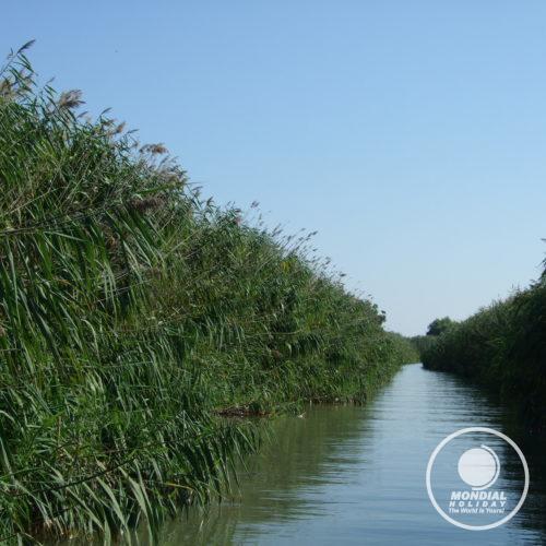 Excursie cu barca în Delta Dunării